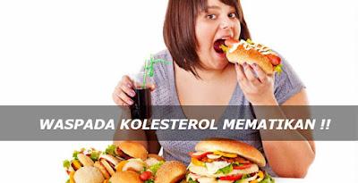 Obat Kolesterol Yang Cepat dan Ampuh