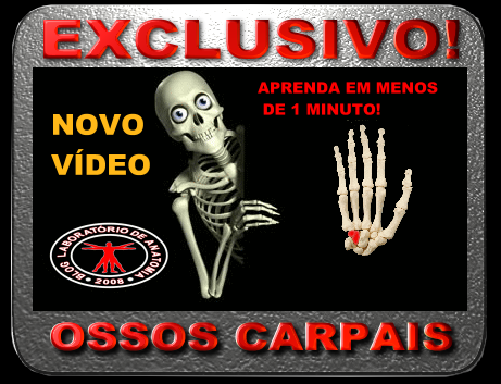 NOVO VÍDEO DO BLOG: