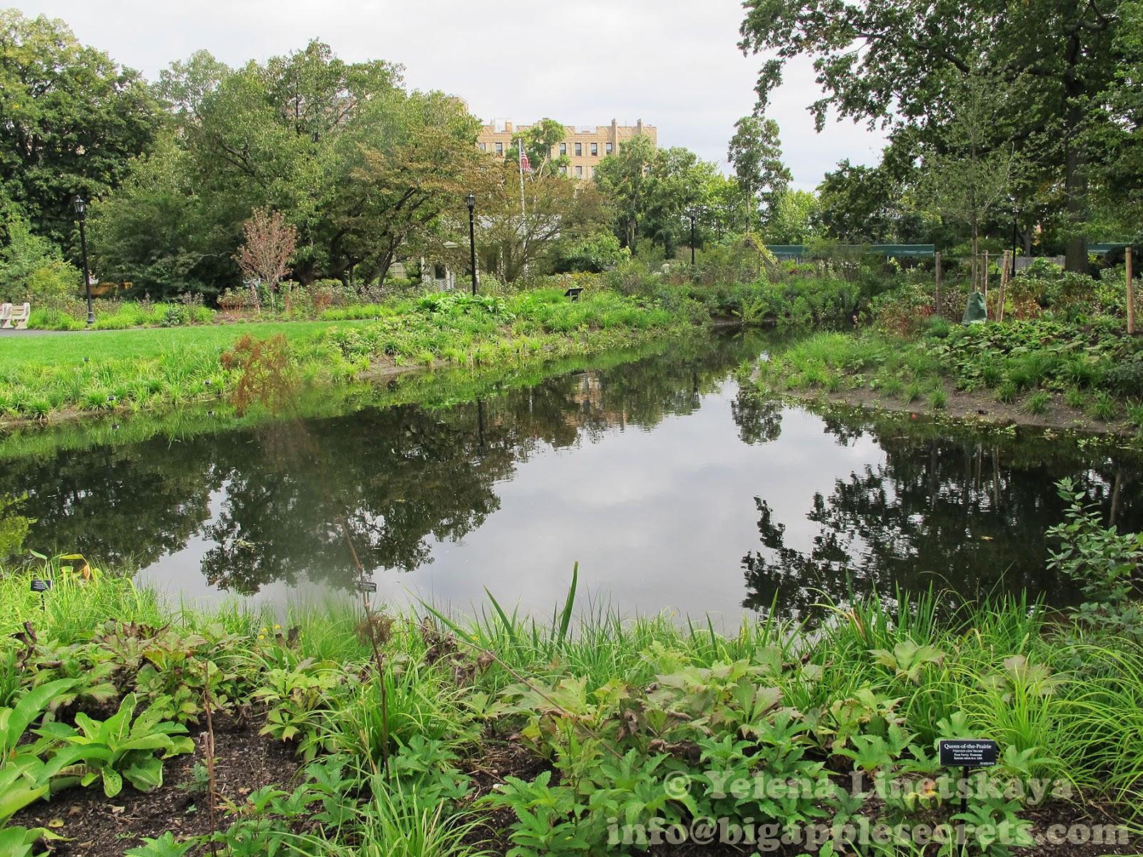 Big Apple Secrets Water Garden A New Project In