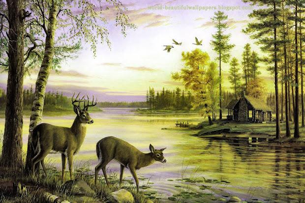 Beautiful Animal Paintings of Nature