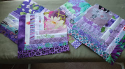 Gray Cat Quilts - Recent Work