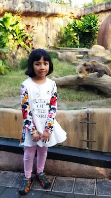 teteh rafa di dean kandang kaca beruang madu wisata indonesia keluarag malang batu secret zoo dan eco green park malang jatim nurul sufitri mom lifestyle blogger