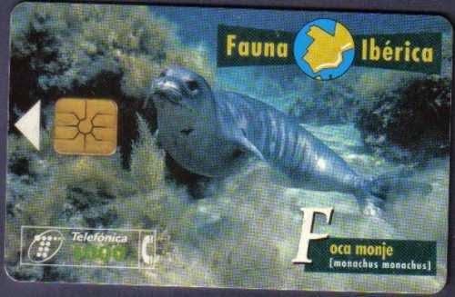 Tarjeta telefónica Foca monje (Monachus monachus)