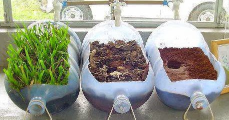 Clean Air Filter >> Garden and Farms: Plant Water Filtration Experiment