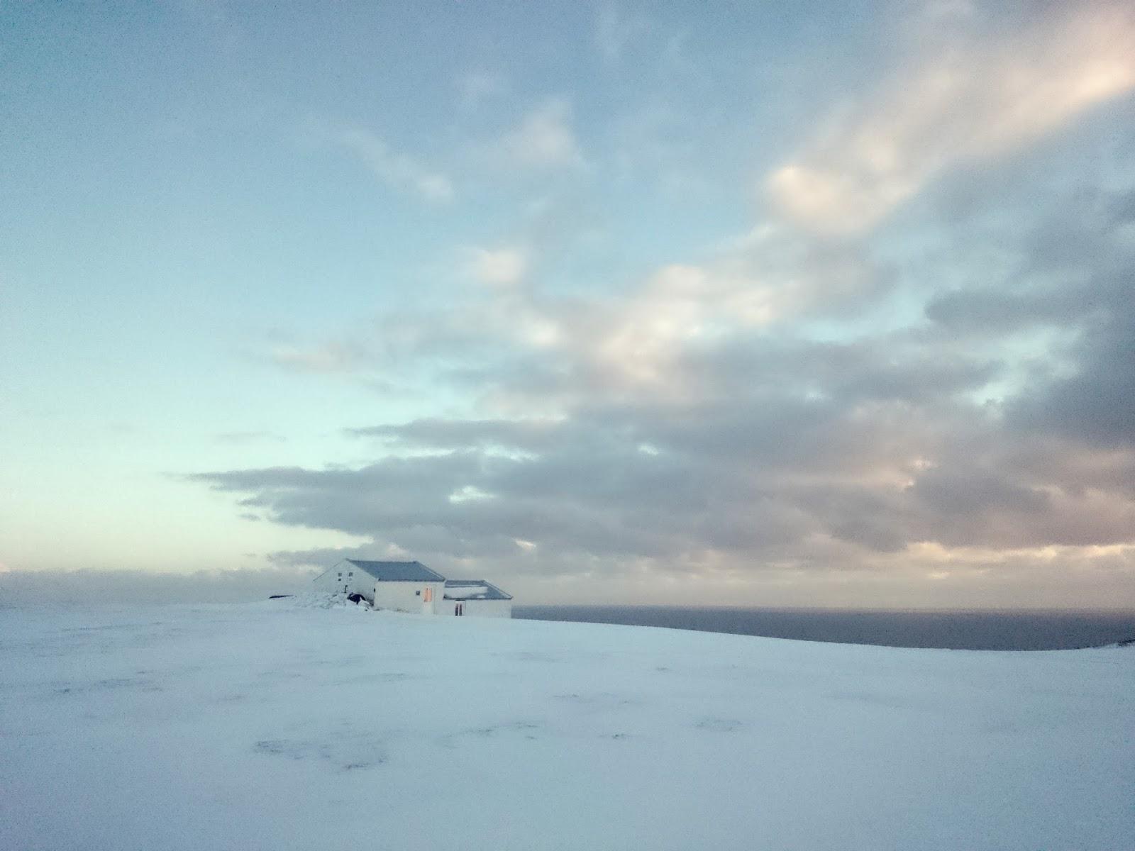 owczarnia, Dyrholaey, Islandia, panidorcia, blog o Islandii