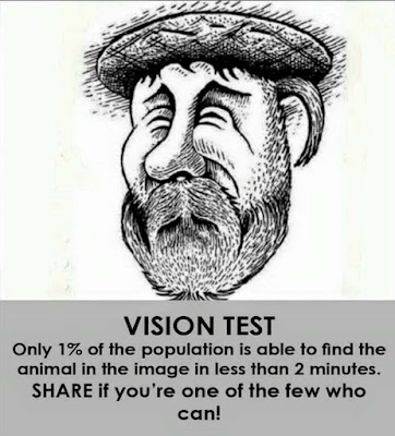 Optical Illusion Picture Brain Teaser