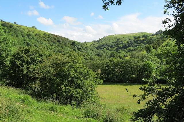 A view down from the trail - lush meadow below, surrounded by green hillsides and trees in full leaf.
