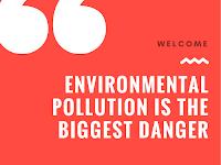 Environmental pollution is the biggest danger