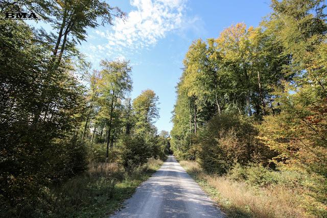 wandern rheinland-pfalz - wanderung montabaur - westerwald - BMA outdoor blog