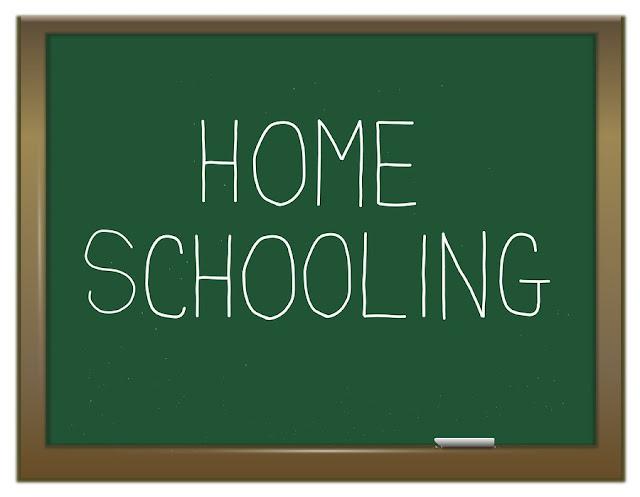 Resultado de imagem para educação domiciliar