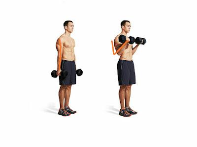 Gym biceps