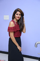 Pavani Gangireddy in Cute Black Skirt Maroon Top at 9 Movie Teaser Launch 5th May 2017  Exclusive 033.JPG