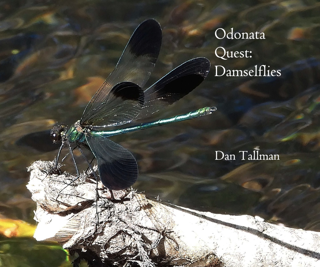 NEW  EDITION: Damselfly .pfd $9.99. Also other formats. Click cover image.