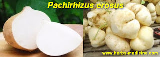Beauty Using Pachyrhizus erosus
