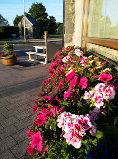flowers at the forge  moycullen