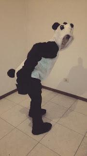 Disfraz DIY oso panda perfil
