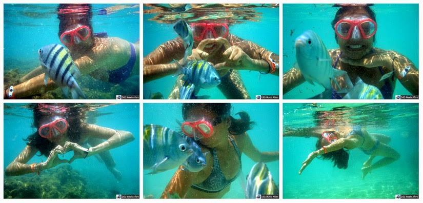 Snorkel em Maragogi (Alagoas) - o Caribe Brasileiro