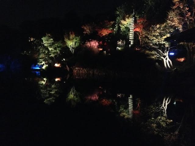 Mejiro Garden autumn light up