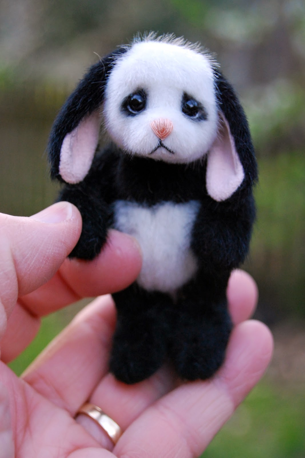 Donna and the Bears: Panda Bunny Lop