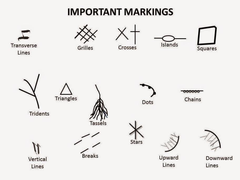 palm reading india  symbols on palm