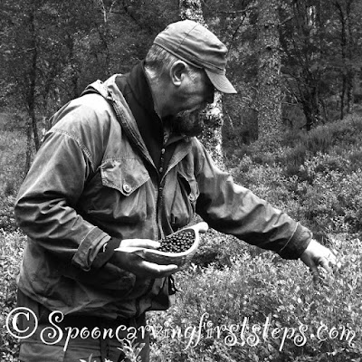 foraging-glen-affric.blaeberry