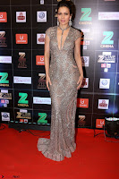 Bollywood Celebrities on the Red Carpet Of Zee Cine Awards 2017 Exclusive 075.JPG