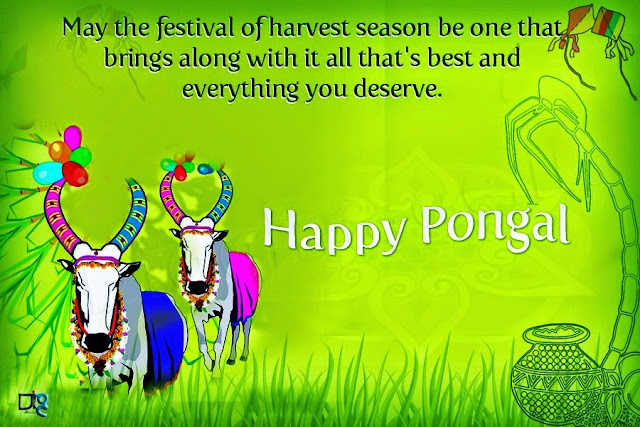 Happy Pongal 2016 Wishes Images