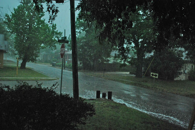 Wild About Texas A Good Thunderstorm Brings Welcome Rain
