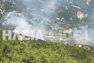 Ξέσπασε πυρκαγιά στο Κούμανι Ηλείας