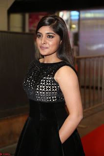 Niveda Thomas Black Sleeveless Cute Dress at 64th Jio Filmfare Awards South 2017 ~  Exclusive 117.JPG