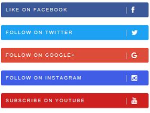 Social media follow button 3