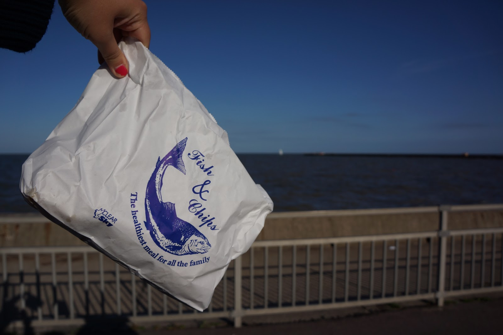 fish and chips bag