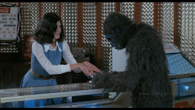 ape at the concession stand at a movie theater getting snacks for the show