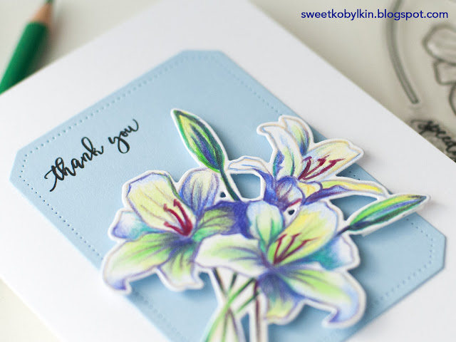 Three Ways To Colour A Card - Polychromos Pencils Coloured Spring Card