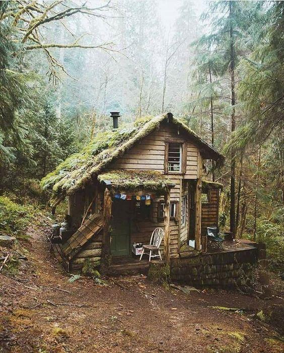 Cabin Fever....