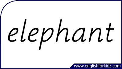 elephant flashcard, single word