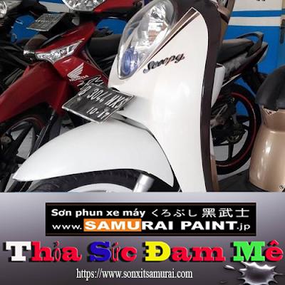 sơn vỏ xe máy màu H196 samurai