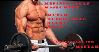 Cara Menambah dan Meningkatkan Massa Otot .