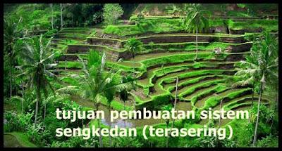 Terasering biasanya dibentuk oleh para petani menyerupai di sawah atau di ladang yang tanahnya Tujuan pembuatan sistem sengkedan (terasering)