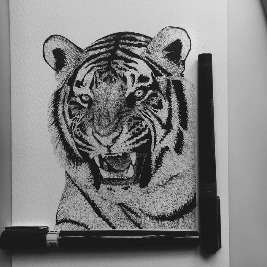 12-Tiger-Paige-Bates-Stippling-Drawings-www-designstack-co