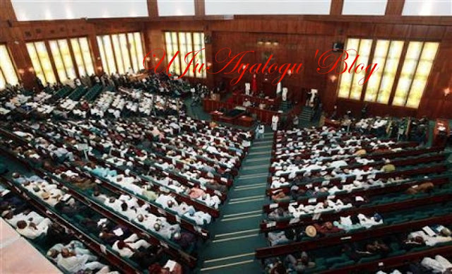 Female lawmakers disrupt proceedings at house of reps