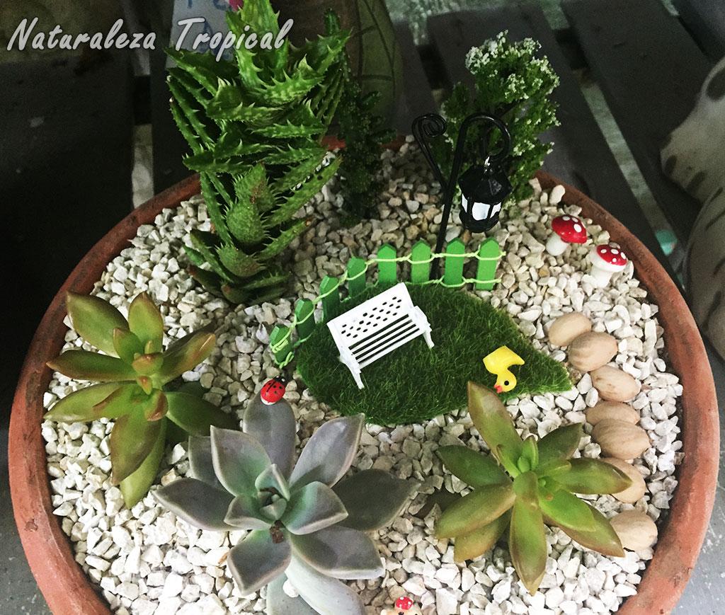 Naturaleza tropical galer a de arreglos con plantas for Plantas para estanques pequenos