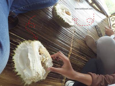 Durian di Sukadanaham