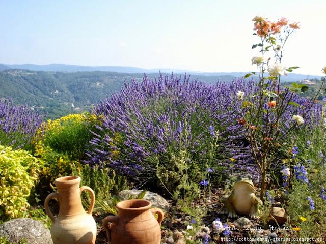 Tal in der Ardèche Frankreich