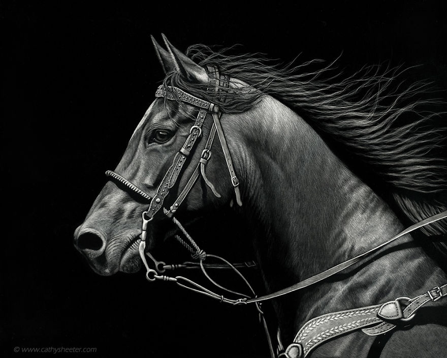 12-Horse-Racing-the-Wind-Cathy-Sheeter-Hyper-Realistic-Scratchboard-Wild-Animal-Drawings-www-designstack-co