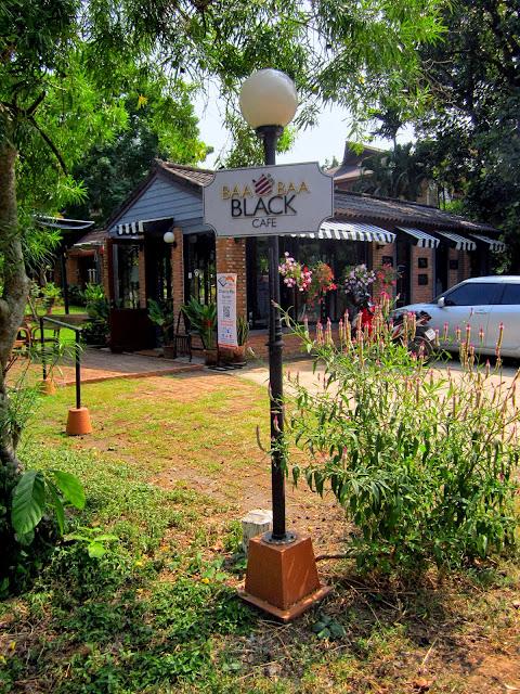 Samoeng Loop Chiang Mai Baa Baa Black