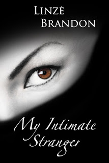 My Intimate Stranger by Linzé Brandon, cover teaser