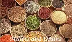Millets or Siridhanya are three and five times superior in nutritional terms to the rice and to the grain wheat