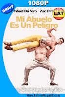 Mi Abuelo es un Peligro (2016) Latino HD 1080P - 2016