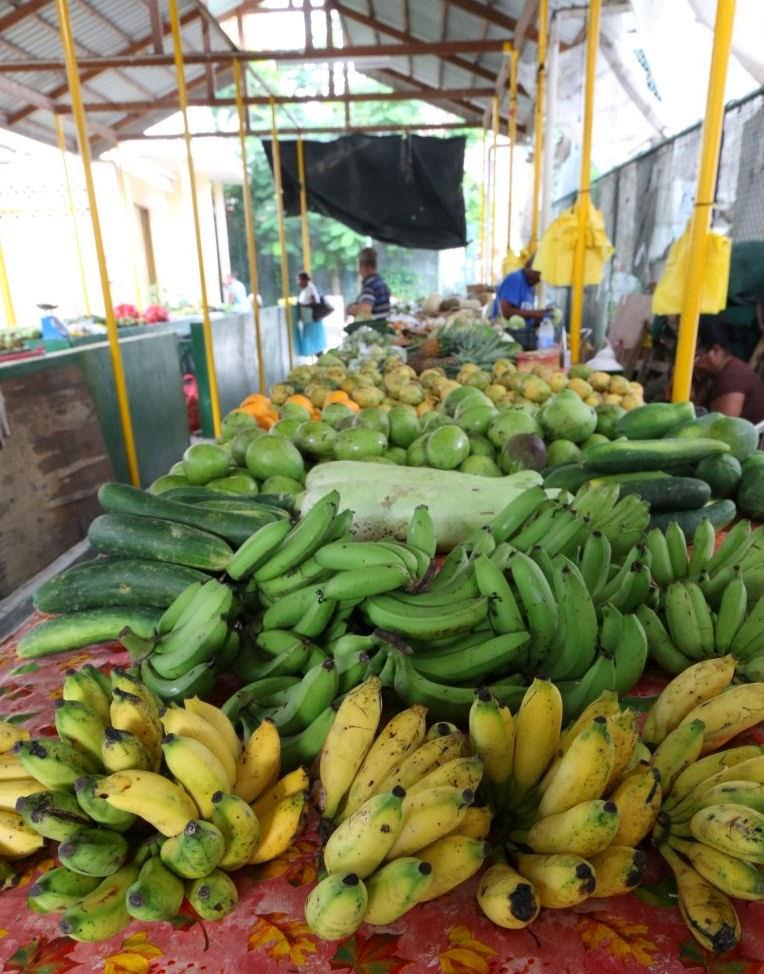 Seychellen Bananen (C) JUREBU